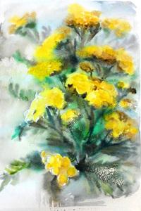 прорисовуємо квіти