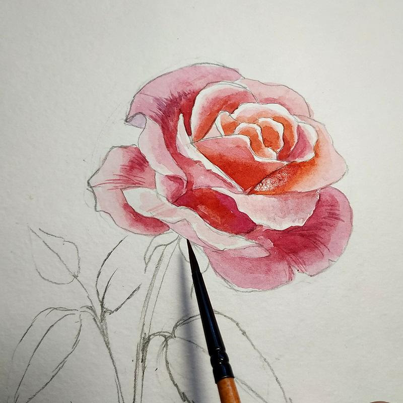 Тонким пензлем штріхуем пелюстки троянди