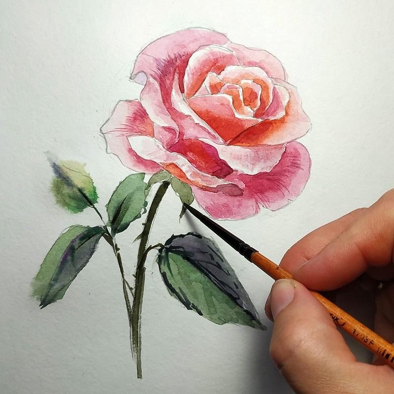 Малюємо стебло і листя троянди використовуючи прийоми по-мокрому і по-сухому