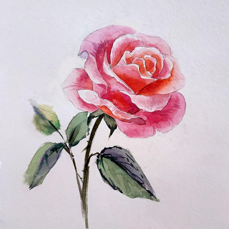 Тонким пензлем промальвуємо деталі на стеблині і листях троянди