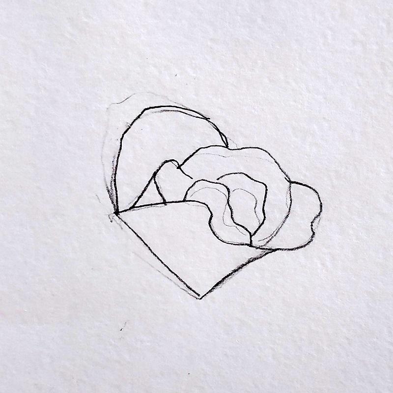 троянда олівцем 2